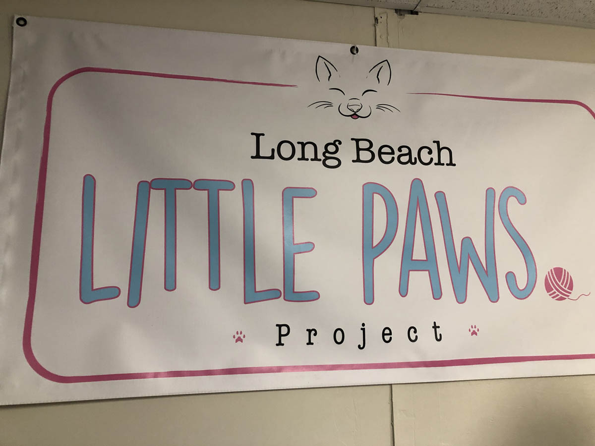 FOLBA Matches Donations for Little Paws Kitten Nursery