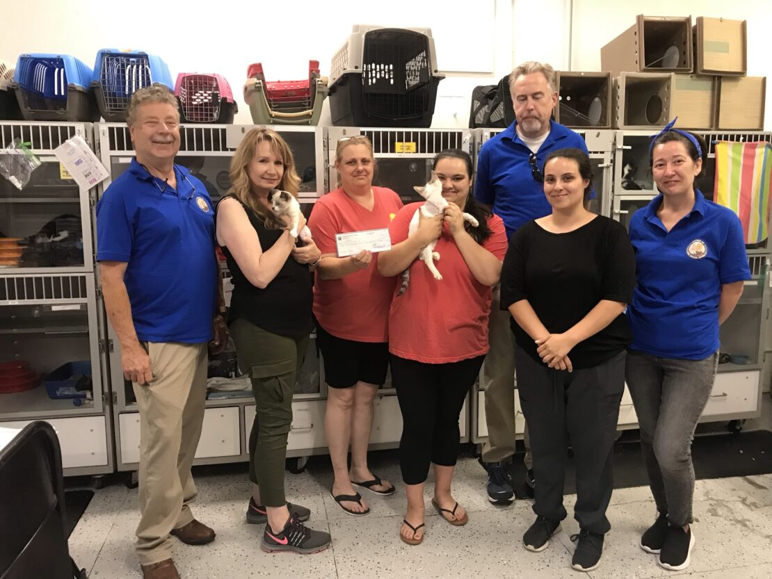 Cat Transportation: FOLBA Donates Vehicle Funds for Rescue